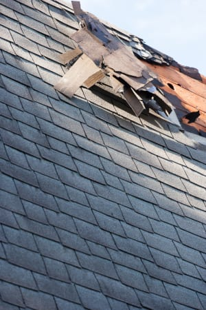 roof inspection can be a great way to make sure that your roof is in tip-top shape